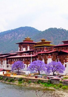 Bhutan Dzong scenery 布丹 風水師父玳瑚師父 Singapore Feng Shui Master Dai Hu Review
